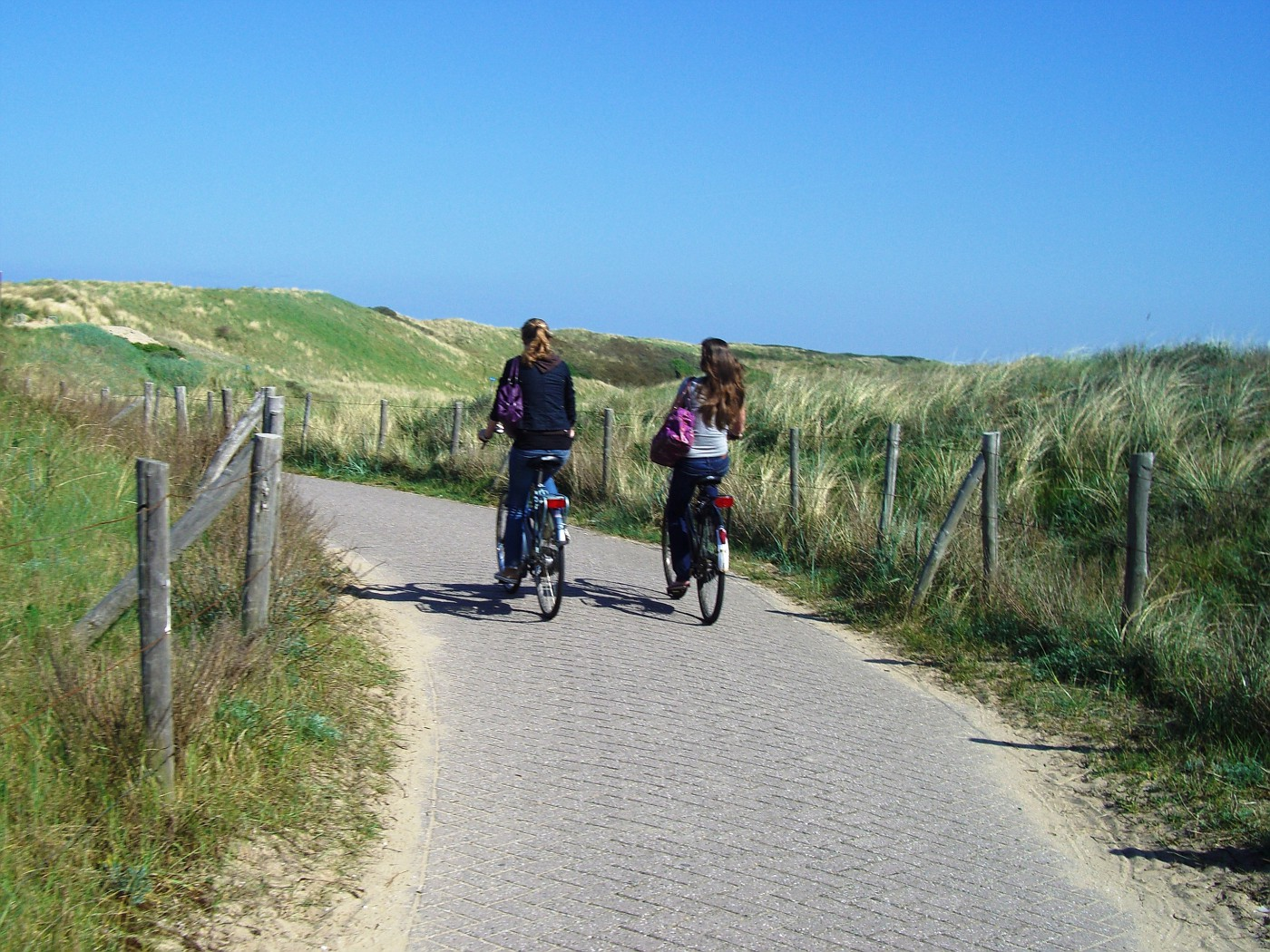 Cycle track to Kennemerland