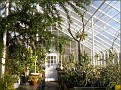 a greenhouse on the Edgerton Park grounds